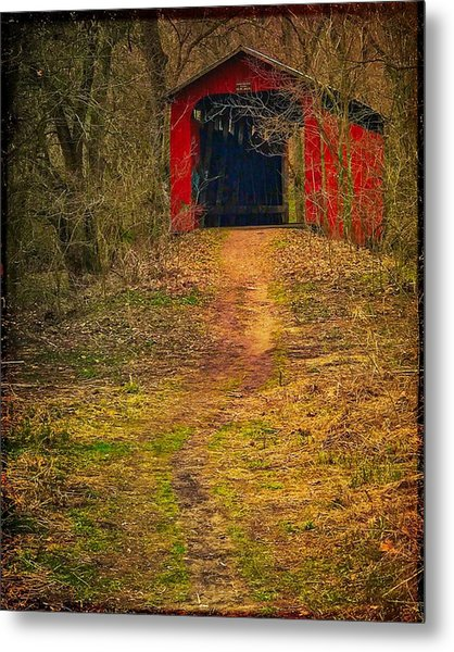 Path To Bridge Metal Print