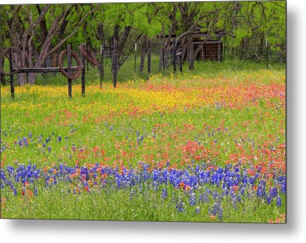 Pattern Of Texas Paintbrush Metal Print by Adam Jones