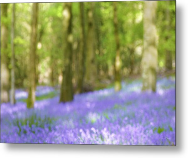 Pause Among The Bluebells Metal Print by Norma Slack