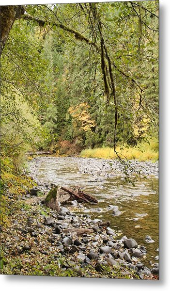 Peaceful Molalla River Metal Print