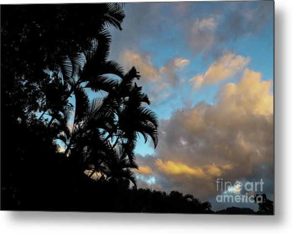 Peach Sunset  Metal Print