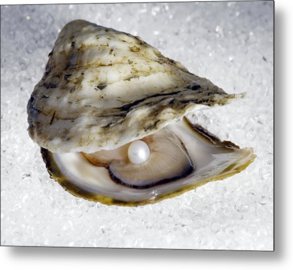 Pearl In Open Oyster Metal Print