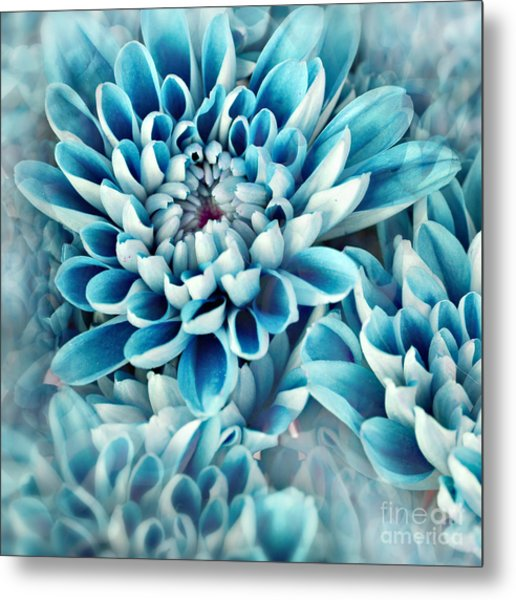 Photo Illustration Of Abstract Flower Metal Print by Annmarie Young