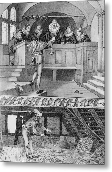Pied Piper Of Hamelin Metal Print by Hulton Archive
