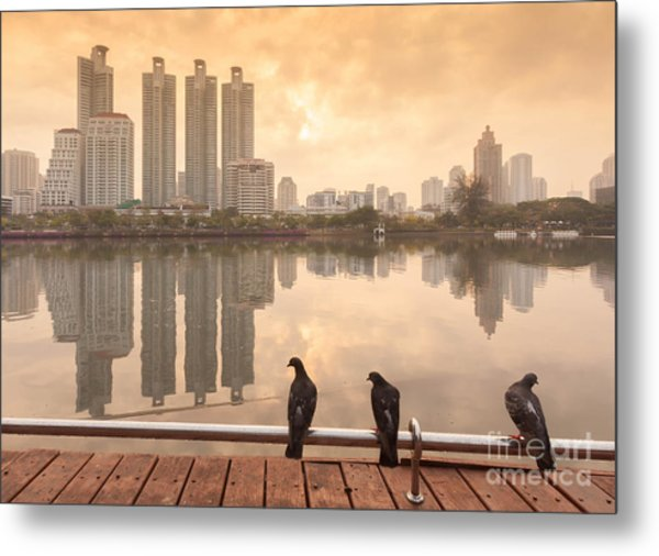 Pigeons On Bar At  Benchakitti Metal Print