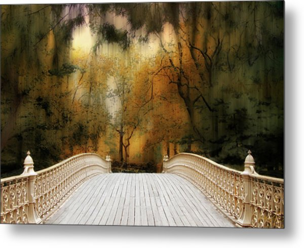 Pine Bank Arch In Autumn Metal Print
