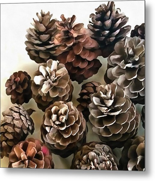 Pine Cones Organic Christmas Ornaments Metal Print