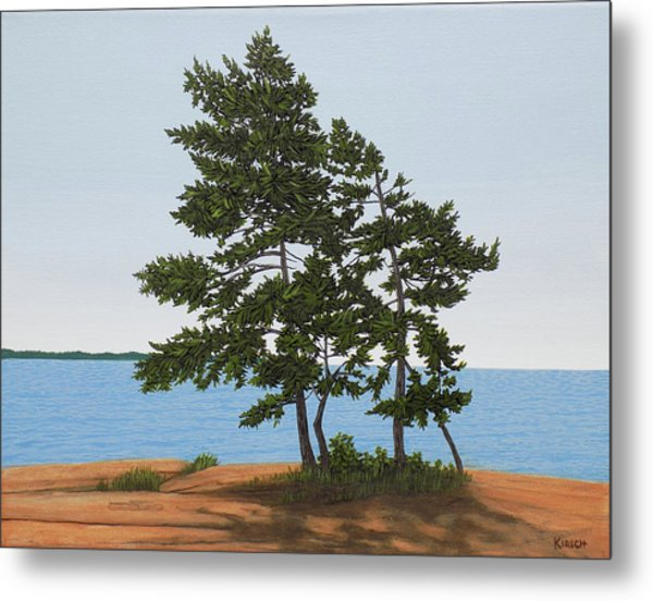 Pine On The Point Metal Print