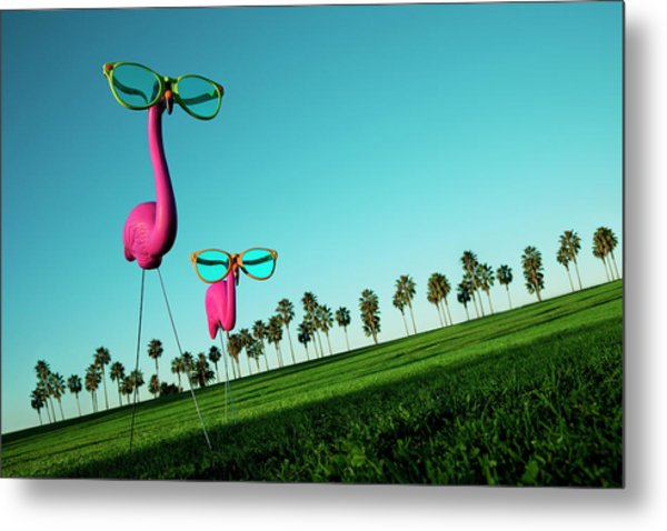 Plastic Pink Flamingos On A Green Lawn Metal Print