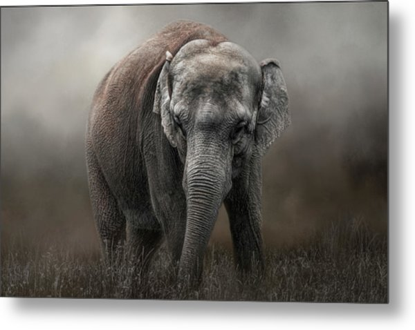Power And Grace Metal Print