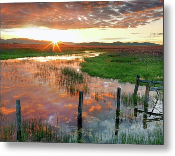 Metal Print featuring the photograph Prairie Sunrise by Leland D Howard