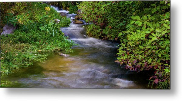 Metal Print featuring the photograph Provo Deer Creek by TL Mair