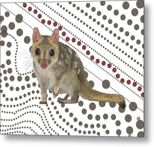 Q Is For Quoll Metal Print