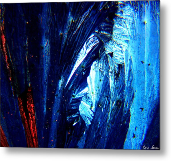 Quenching The Desire Metal Print