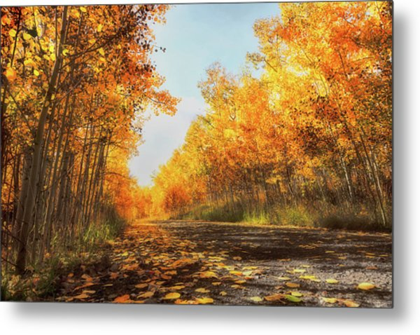 Metal Print featuring the photograph Quiet Time by Rick Furmanek