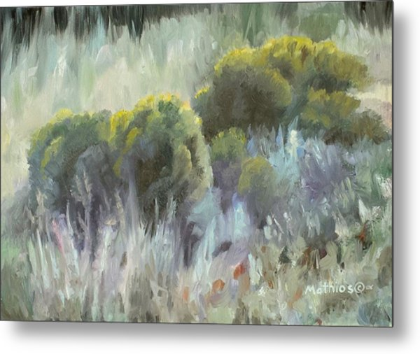 Rabbit Brush Study Metal Print