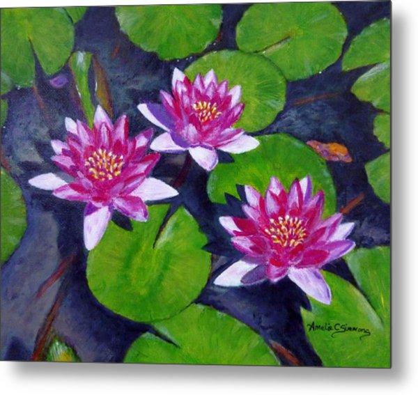 Rancho Water Lilies Metal Print
