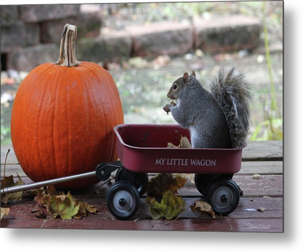 Ready To Ride My Little Red Wagon Metal Print