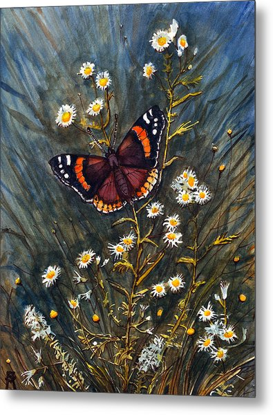 Red Admiral And Wild Aster Metal Print