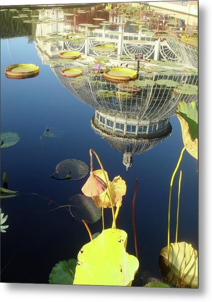 Reflection Of Botanical Garden Metal Print