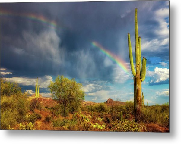 Metal Print featuring the photograph Respite From The Storm by Rick Furmanek