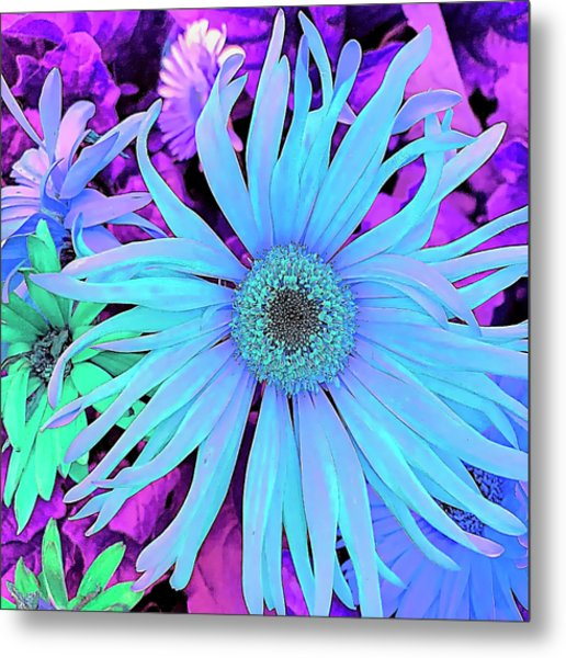 Rhapsody In Bleu Metal Print