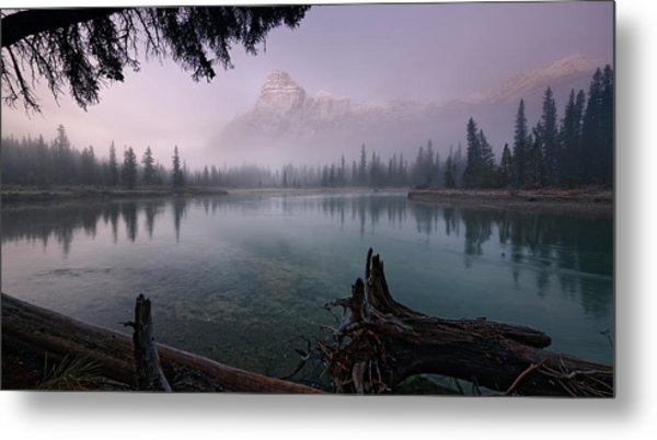 Rising From The Fog Metal Print