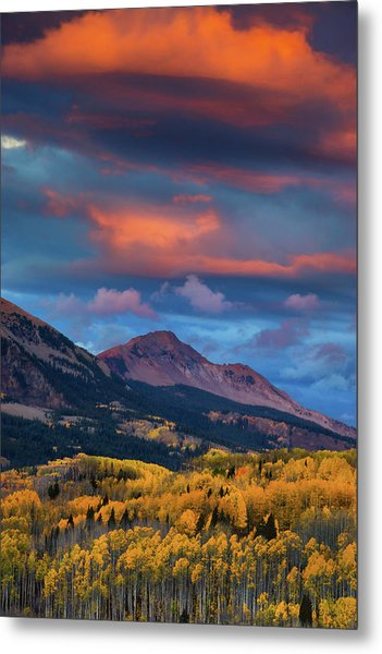 Rising Color  Metal Print