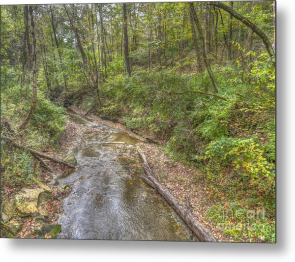 River Flowing Through Pine Quarry Park Metal Print