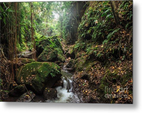 River In Stones Of Tropical Jungle Metal Print