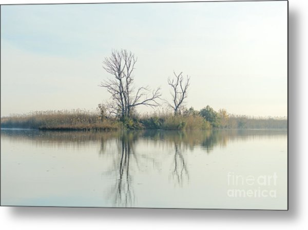 River With Tree Reflected In The Delta Metal Print