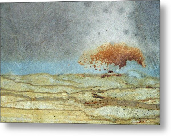 Rock Stain Abstract 1 Metal Print