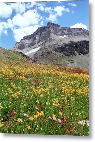 Rocky Mountains & Wildflowers Metal Print