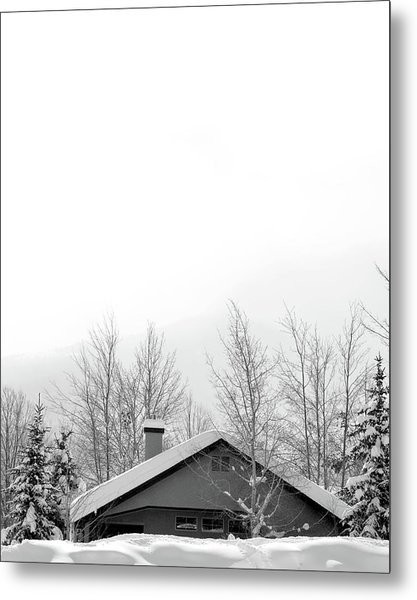 Roof Top Metal Print by Dana Klein