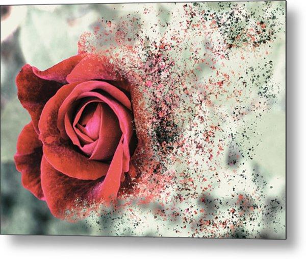 Rose Disbursement Metal Print