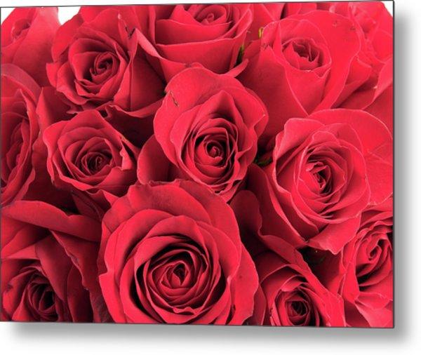 2 red spiral flower 22 mm metal prints