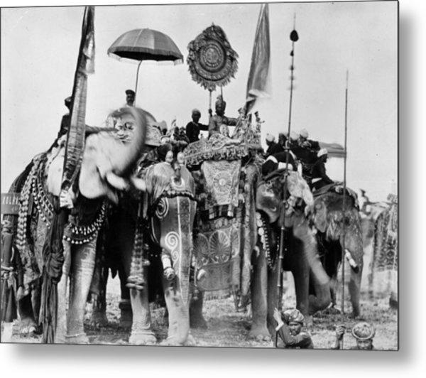 Royal Elephants Metal Print by Hulton Archive