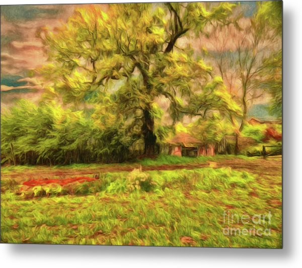 Metal Print featuring the photograph Rural Rustic by Leigh Kemp