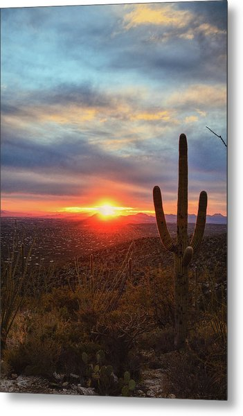 Metal Print featuring the photograph Saguaro Cactus And Tucson At Sunset by Chance Kafka