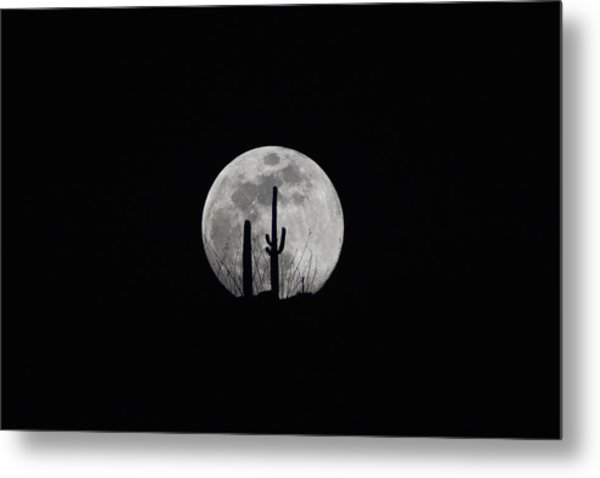 Metal Print featuring the photograph Saguaro Moon Silhouette  by Chance Kafka