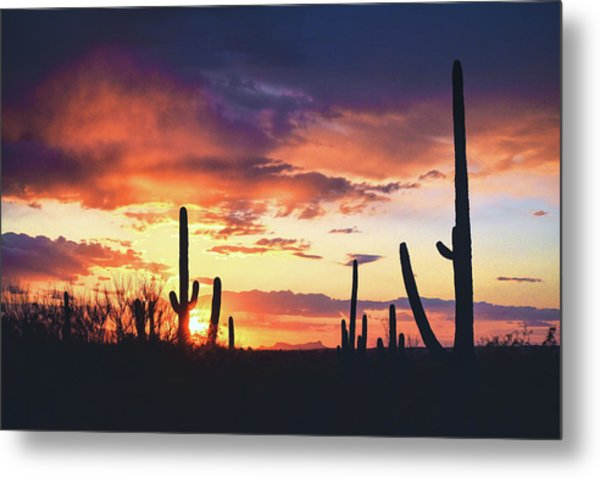 Metal Print featuring the photograph Saguaros Watch The Sunset by Chance Kafka