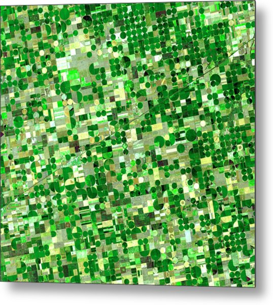 Satellite View Of Crop Circles In Metal Print by Education Images