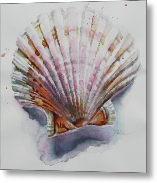 Scallop Seashell Metal Print