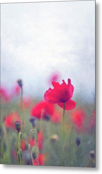 Scarlet Poppies In Painterly Style Metal Print