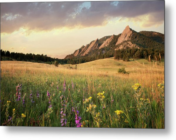 Scenic View Of Meadow And Mountains Metal Print by Seth K. Hughes