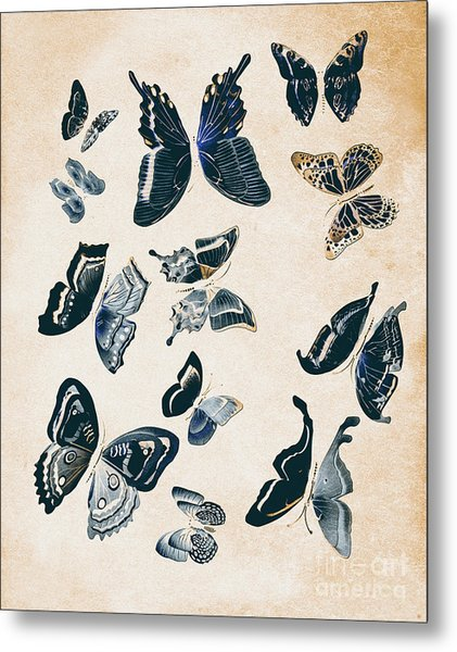 Scrapbook Butterflies Metal Print