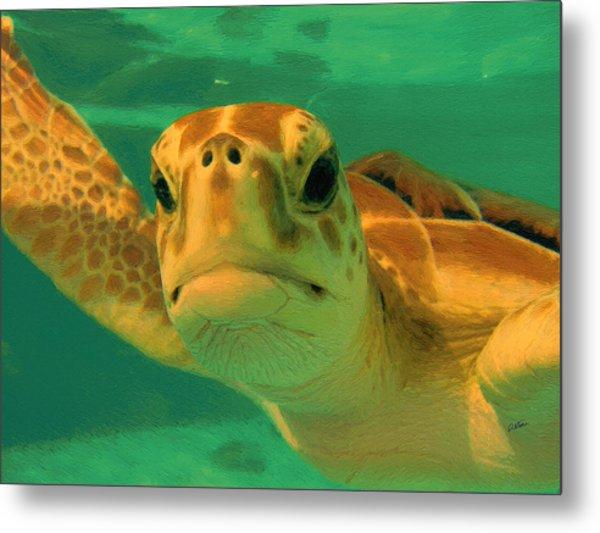 Sea Turtle Off The Mexican Coast - Dwp2086549 Metal Print