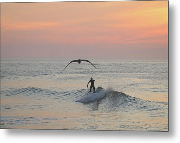 Seagull And A Surfer Metal Print