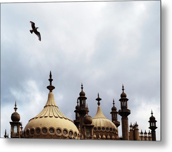 Seagull And Brightonpavillion Metal Print by Darren Lehane