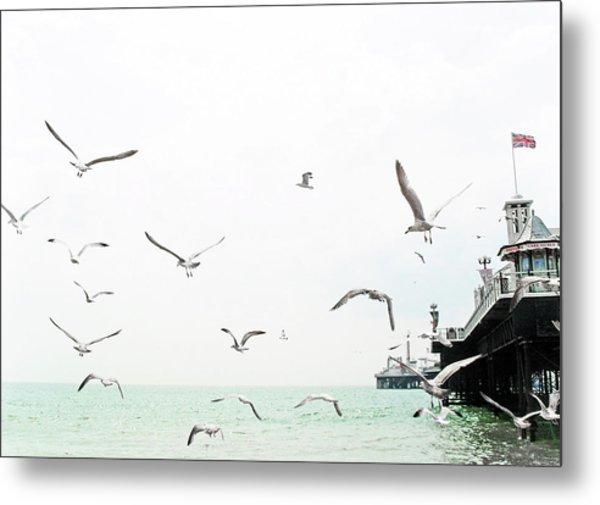 Seaside Seagulls Metal Print